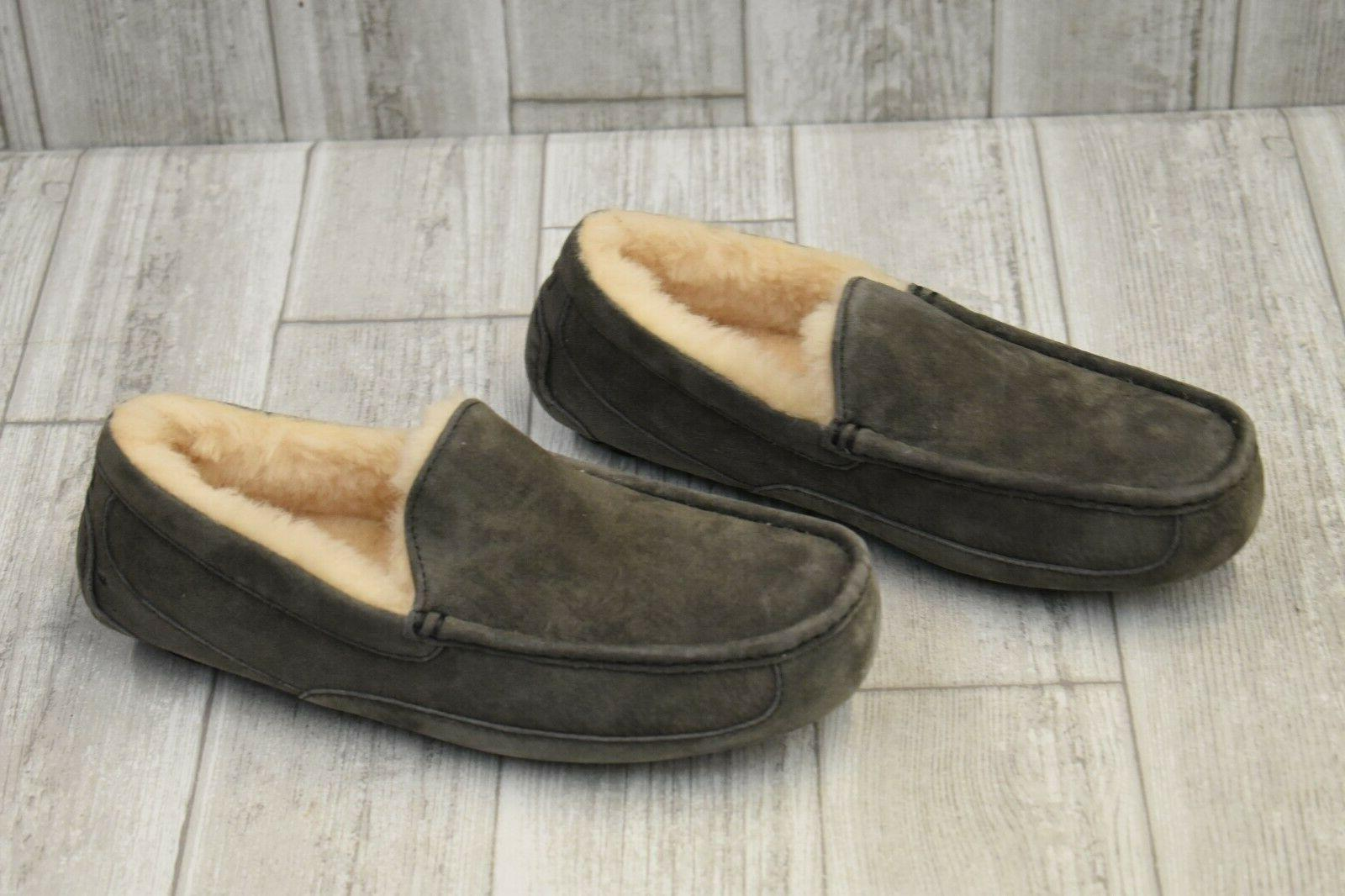 + Ascot Slipper Choose Your Size